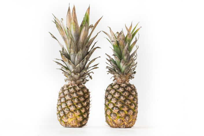 Pineapples (1:1 also available)